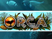 Онлайн игра Orca