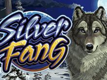 Играть в азартную игру Silver Fang