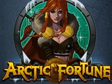 Онлайн игра Arctic Fortune