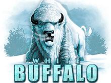 Онлайн игра White Buffalo
